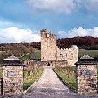 Cloghan Castle