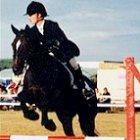 Clonshire Pony Camp